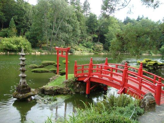 Parc Oriental de Maulevrier : pont japonais