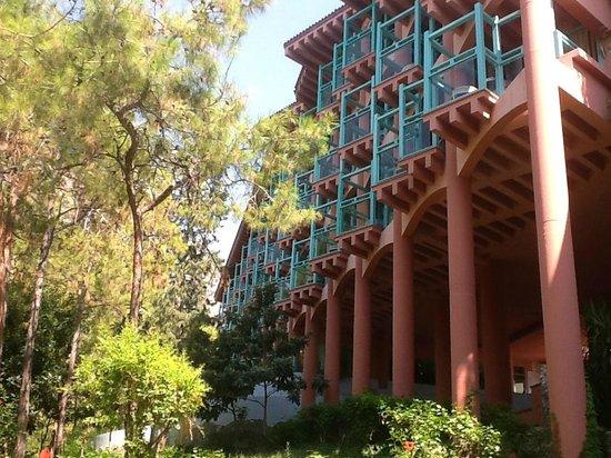 SENTIDO Lykia Resort & Spa: Sentido Orman tarafı odalar