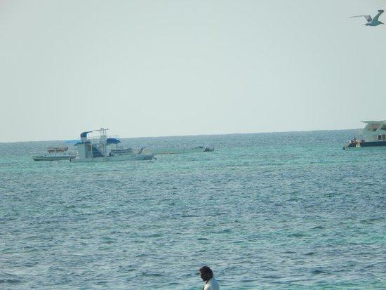 Punta Cana Party Boat: Booze Cruise
