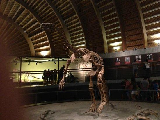 Museo Jurásico de Asturias MUJA: музей юрского периода