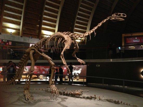 Museo Jurásico de Asturias MUJA: макет скелета динозавра