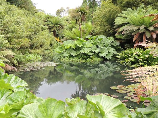 The Lost Gardens of Heligan : Giardino