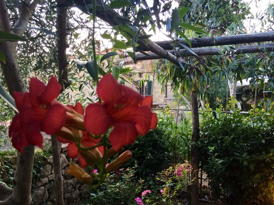 Hotel Palazzo del Capitano Exclusive Wellness & Relais: Garden