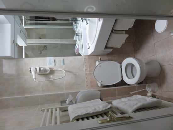 Hotel du Dauphin : トイレ