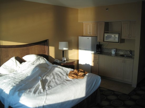 "BEST WESTERN New Smyrna Beach Hotel & Suites: Room 614 ""King Studio"", full size fridge was nice"