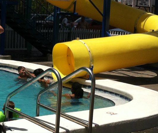 Inflatable Slide Clearwater Beach: Picture Of The Sandpiper Beacon Beach