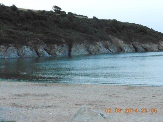 Cove Restaurant & Bar: spiaggia
