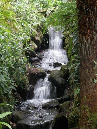 palacio de monserrate cascada jardin monserrate