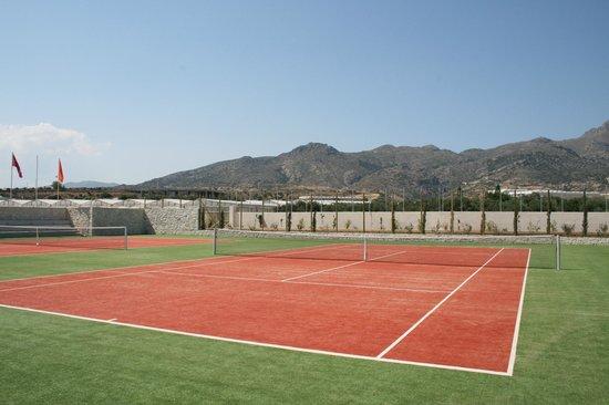 Ostria Resort & Spa : tennis du club