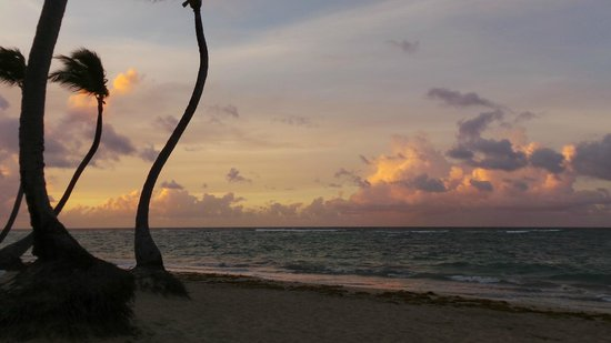 Sirenis Punta Cana Resort Casino & Aquagames: plage