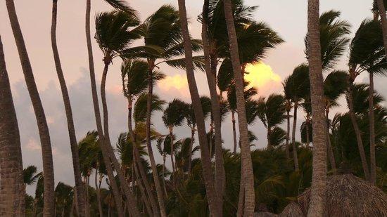 Sirenis Punta Cana Resort Casino & Aquagames : vue de la plage