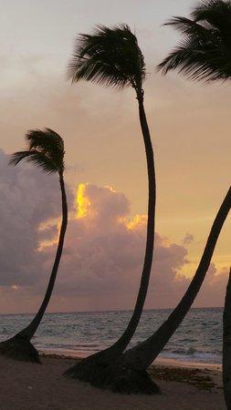 Sirenis Punta Cana Resort Casino & Aquagames : plage