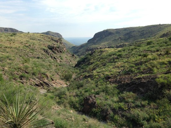 Cibolo Creek Ranch: Amazing view from 7000' during the Mountain tour