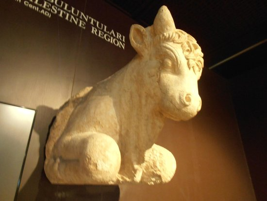 Museo de Arqueología de Estambul: Археологический музей. Голова быка