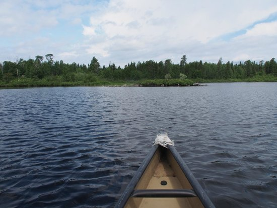 Timber Wolf Lodge: A view from our canoe. Great lake