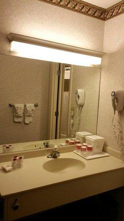 Ramada Boston: Clean bathroom good.