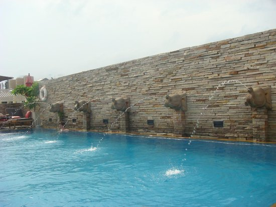 Buddy Lodge Hotel: super piscine