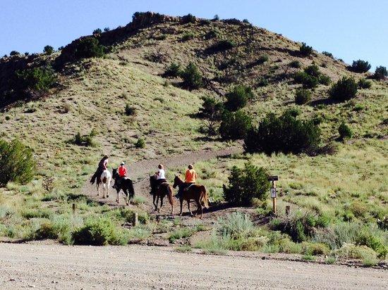 Broken Saddle Riding Company: Beautiful country