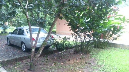 Hotel Lavas del Arenal: Vista