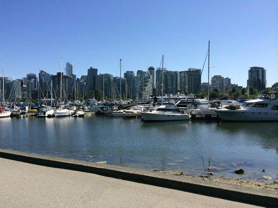 Stanley Park: Uitzicht op downtown Vancouver en de jachthaven