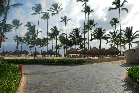 Majestic Colonial Punta Cana : Resort View