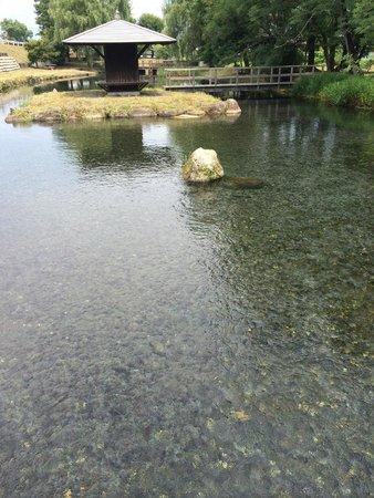 安曇野わさび田湧水群公園
