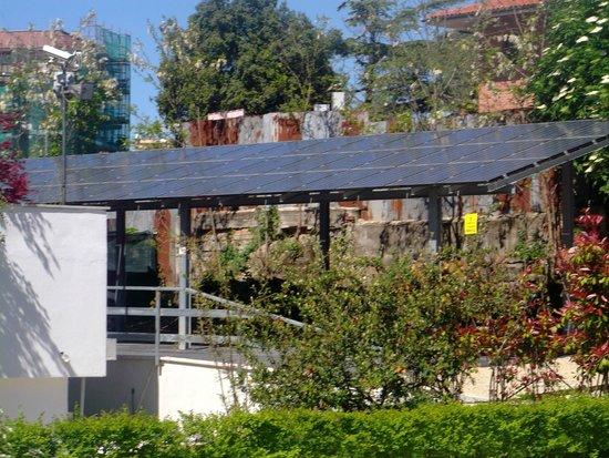 EcoHotel Roma : Vue