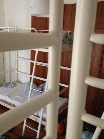 Wild Elephants Hostel : 6 person dorm (mixed)