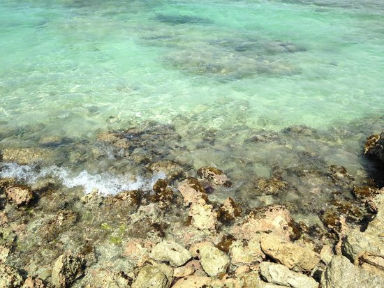 Catalonia Riviera Maya: rocks in the water