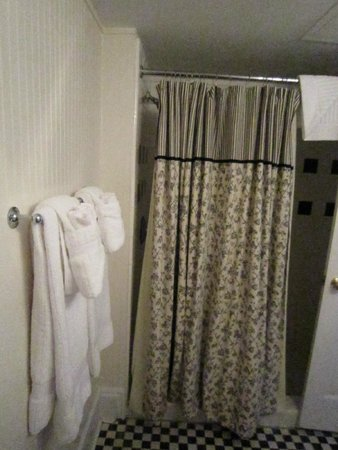 The Marshall House: Shower