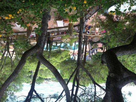 Poseidon Gardens Terme: Scenic Gardens