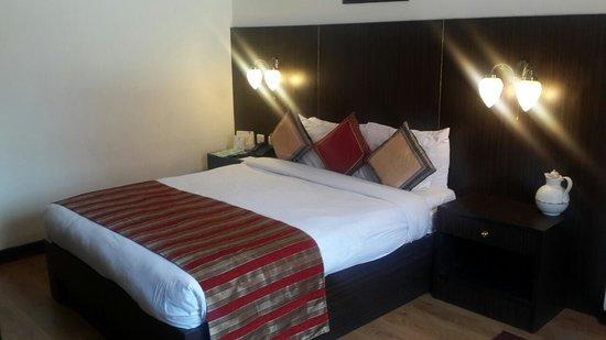 Hotel Vaishali : Room Number 1123