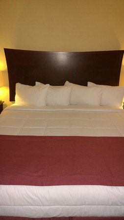 Universal Palms Hotel : King Bed