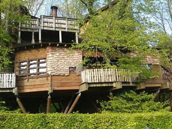 The Treehouse Restaurant at the Alnwick Garden: Treehouse