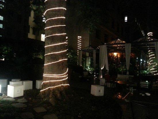 Hotel Manin: giardino di notte