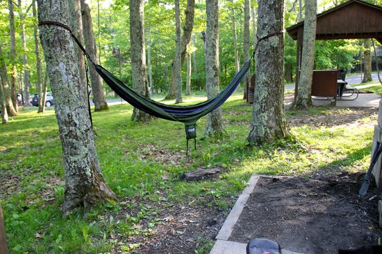 Lewis Mountain Cabins: hammock!!! we brought it