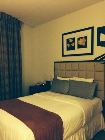 The Hotel 91 : The bed; the room included a dresser and tv facing and a full bathroom.