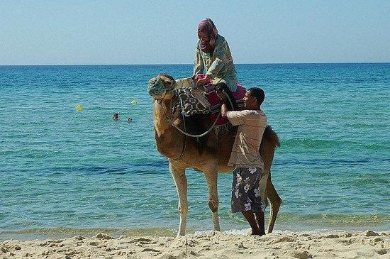 Hammamet Beach: Tunisia: passeggiata romantica a 3