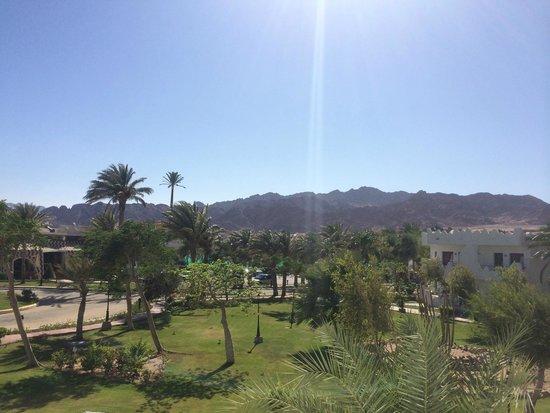 Swiss Inn Resort : photo de la vue au balcon