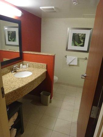 Courtyard Miami Airport: Bathroom