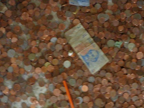 Pope's Palace (Palais des Papes): devaluado peso argentino ! todos tiran monedas nosotros billetes !