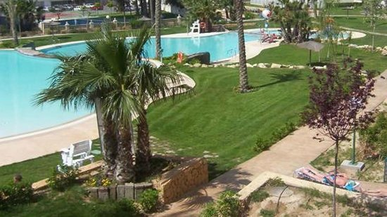 Gemelos XXII Apartments: Large grass area and palm tess by the pools