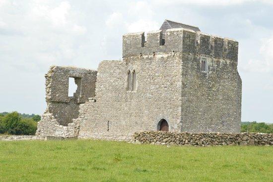 Kilmacduagh Tower: Abbot's House, Kilmacduagh