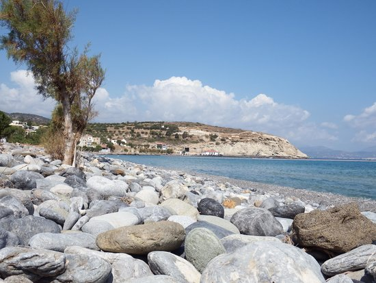 Flowers of Crete: View from the beach