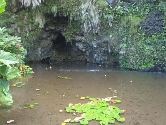 Maraa Grotto: Grotte Teanateatea