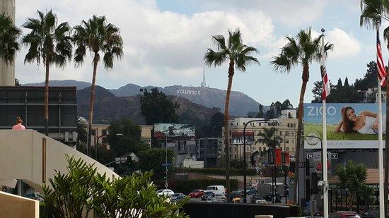 Loews Hollywood Hotel : Vista do letreiro de Hollywood do patio do hotel