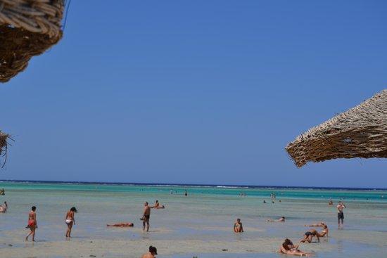 Blue Lagoon Marsa Alam : Spiaggia