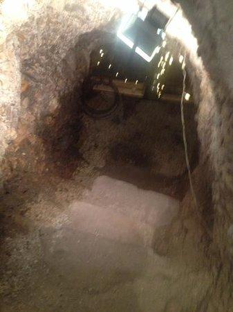 Convivio Rome Italian One Day Cooking Holidays : Wine Cellar