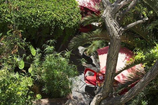 Hotel des Arceaux: Jardin - Vue chambre