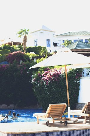 Hyatt Regency Sharm El Sheikh Resort : Pool area